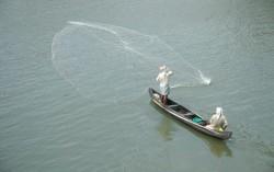 Beauty Of Fishing in Kerala Backwaters