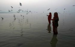 New Centre for Ganga River Basin Management and Studies