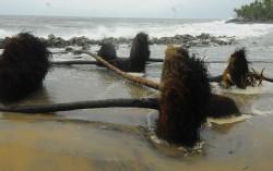 Coastel Erosion…