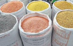 Government to release 10000 MT pulses from buffer stock
