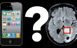 Mobile phones don't cause brain cancer: Study Report