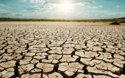 Cabinet Secretary calls for Integrated Action Plan to tackle drought