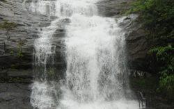 Munnar- Beauty of South