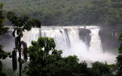 Amazing Athirapilly Water Falls