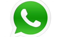 How to function in a Whatsapp group? – Protocols