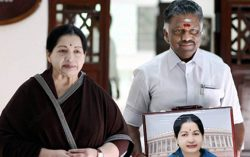 Who is Paneer Selvam? – Satire