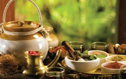 Government taken steps for ensuring quality in supply of traditional medicine