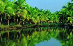 Facts you may not know about Kerala – God's Own Country