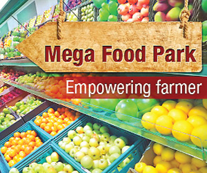 mega food park guidelines Scheme guidelines the implementation of the project starts only after final approval 114 when asked to submit details regarding parameters which are considered before granting in-principle and final approvals for mega food park scheme, the ministry explained that the proposals of mega food parks.