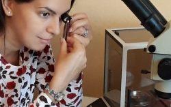 Diamond Price Calculator More Reliable Than Price List – Olga Rosina
