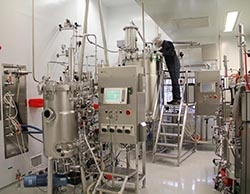 Paras Biopharmaceuticals Finland Oy Announces Successful Development of Biologically Active Romiplostim (N-Plate® Biosimilar) Production Technology