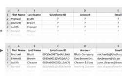 Finding and Reporting Salesforce Data Now Possible with Cloudingo