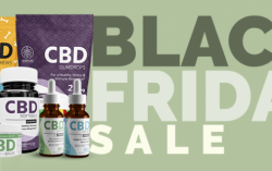 Hempure Announces Black Friday Sale