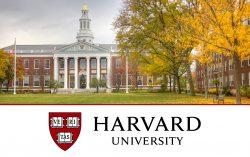 Harvard University is offering 67 free online courses